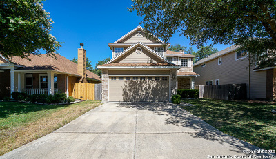 San Antonio Single Family Home New: 20603 View Meadows