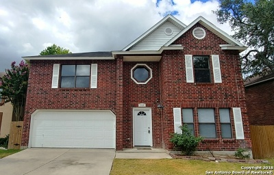 Bexar County Single Family Home New: 11918 Altamonte Oaks
