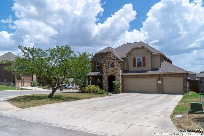 San Antonio Single Family Home New: 24727 Glass Canyon