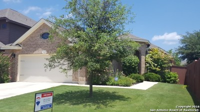 San Antonio Single Family Home New: 8027 Andrews Pass