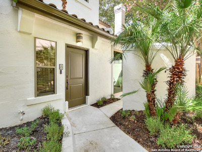 San Antonio Condo/Townhouse New: 208 Grandview Pl #8
