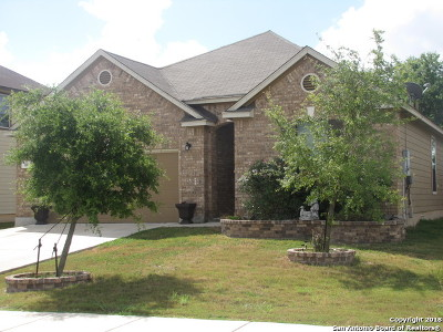 New Braunfels Single Family Home New: 318 Flatland Pass