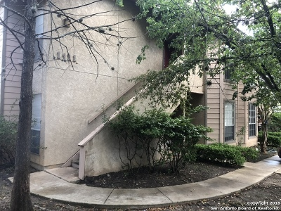 San Antonio Multi Family Home New: 1411 Loma Alto Rd