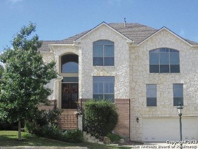San Antonio Single Family Home New: 2807 Stokely Hill