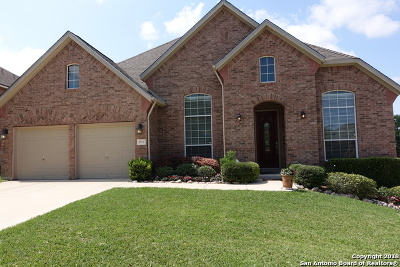 Helotes Single Family Home New: 8614 Artesia Gap