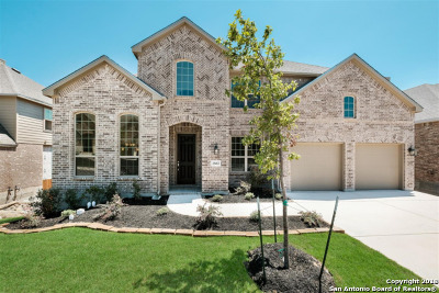 San Antonio Single Family Home New: 25452 River Ledge