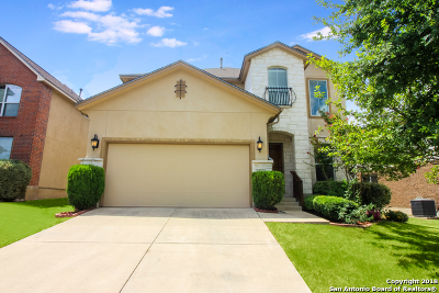 San Antonio Single Family Home New: 23030 Cardigan Chase