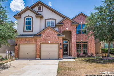 Bexar County Single Family Home New: 310 Chloe Heights