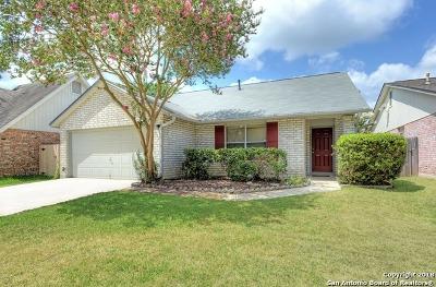 San Antonio Single Family Home New: 13823 Blenhein Ridge