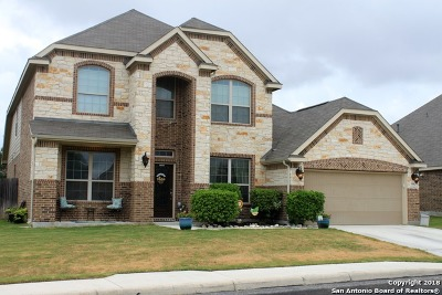 San Antonio Single Family Home New: 4642 Amos Pollard
