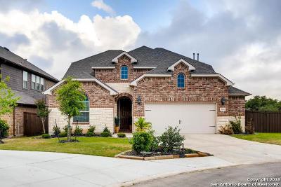 San Antonio TX Single Family Home New: $475,000