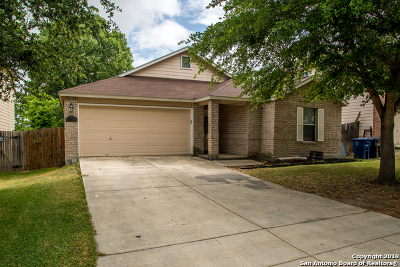 San Antonio Single Family Home New: 10123 Cedarcliff