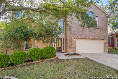 San Antonio Single Family Home New: 22711 San Saba Bluff