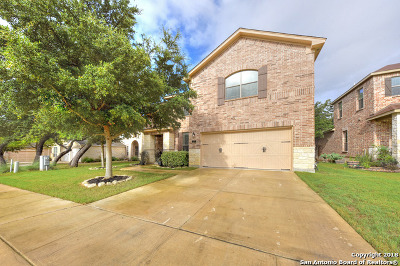Boerne Single Family Home New: 132 Rattlesnake Bluff