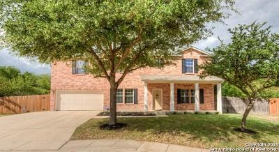 Helotes Single Family Home New: 9711 Magic Cedar