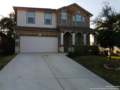 Bexar County Single Family Home New: 6834 Briscoe Mill