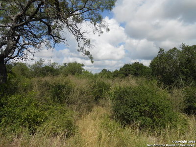 San Antonio Residential Lots & Land New: 00 County Road 3829