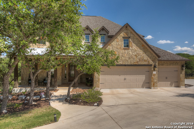 New Braunfels Single Family Home New: 234 Gruene Haven