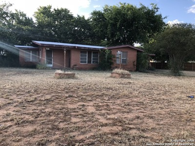 Frio County Single Family Home For Sale: 411 S Trevino St