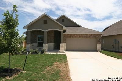 Single Family Home New: 495 Briar Lane