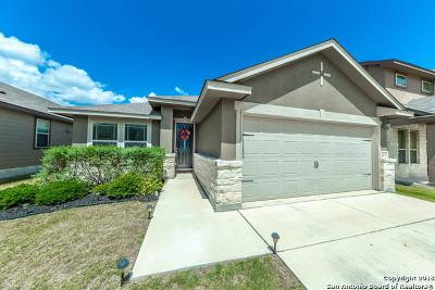 San Antonio Single Family Home New: 2527 Gato Del Sol