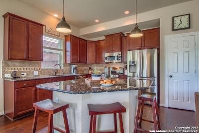 San Antonio Single Family Home New: 24639 Buck Creek