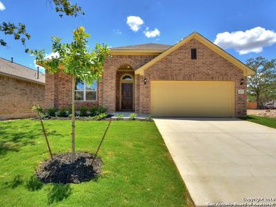 San Antonio Single Family Home New: 25761 Two Springs