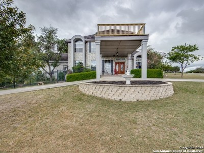 Boerne Single Family Home For Sale: 317 Lake View Dr