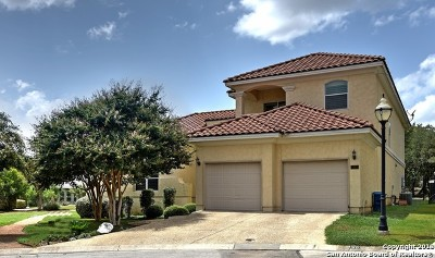 Bexar County Rental New: 30 Stone Hill Ct