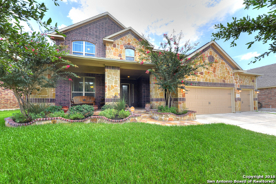 Bexar County Single Family Home New: 5414 Dragon Weed