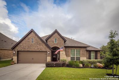 New Braunfels Single Family Home New: 2316 Oak Crossing