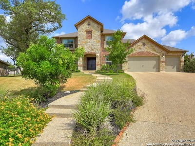 Bexar County Single Family Home New: 24007 Mary Pt