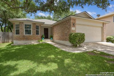 San Antonio TX Single Family Home New: $190,000