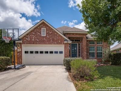 Bexar County, Medina County Single Family Home New: 24527 Flint Creek