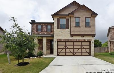San Antonio TX Single Family Home New: $257,469