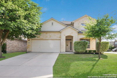 San Antonio Single Family Home New: 8451 Pale Horse Ln