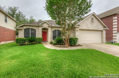 San Antonio TX Single Family Home Back on Market: $285,000