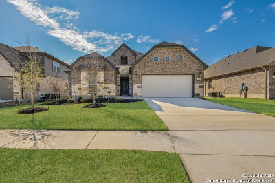 Cibolo Single Family Home New: 117 Waterford