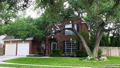 San Antonio Single Family Home New: 9415 Oakwood Garden