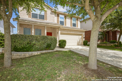Bexar County Single Family Home Active Option: 6134 Big Bend Cove