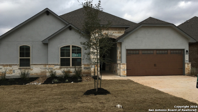 New Braunfels Single Family Home New: 227 Bamberger