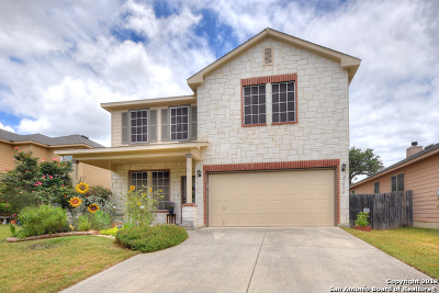Boerne Single Family Home New: 25818 Presidio Alley