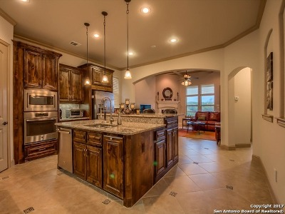 Boerne TX Single Family Home New: $447,300