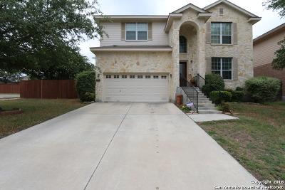 San Antonio Single Family Home New: 12631 Skyline Mesa