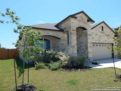 New Braunfels Single Family Home New: 2942 Post Oak Cir