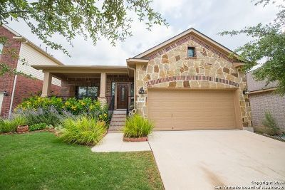 San Antonio Single Family Home New: 1315 Oasis Creek
