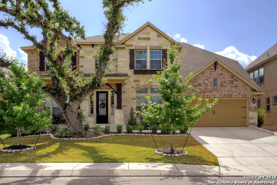 San Antonio Single Family Home New: 18718 Wild Onion