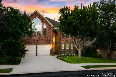 San Antonio Single Family Home New: 1311 Ganahl Ct
