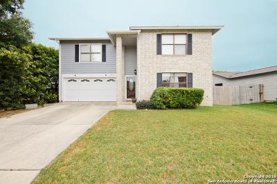 San Antonio Single Family Home New: 9018 Fabens