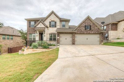 Fair Oaks Ranch Single Family Home New: 8922 Irving Hl